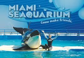 Le Miami Seaquarium